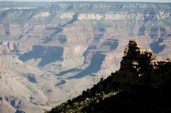 Cedro Ridge, grande canyon Immagine Stock Libera da Diritti