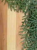 Cedrowa cyprysowa liść granica na drewnianym tle Obrazy Stock