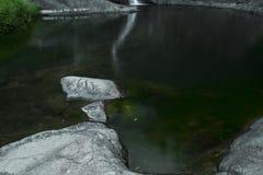 Cedrowa zatoczka Spada w górze Tamborine Zdjęcia Royalty Free