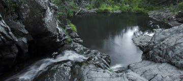 Cedrowa zatoczka Spada w górze Tamborine Fotografia Stock