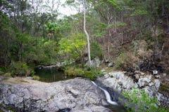 Cedrowa zatoczki skała Gromadzi Australia Obraz Royalty Free