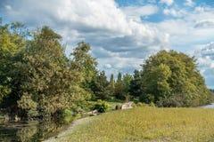 Cedrowy Rzeczny śladu park 4 Zdjęcia Royalty Free