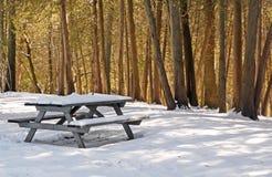 cedry picnic nasłoneczniona stołowa zima Zdjęcie Stock