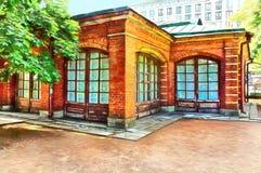 Cegła dom Tsar Peter Wielki royalty ilustracja