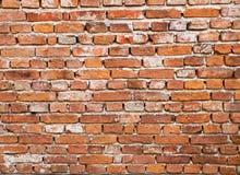 cegły ściana Fotografia Royalty Free