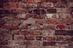 cegły ściana domowa stara sztuki pięknej kamery oczu mody pełne splendoru zieleni klucza wargi target1847_0_ depresję robią fotog Zdjęcie Stock
