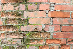 cegły ceglane ściany tekstury wielu stara Obraz Stock