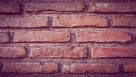 Cegły tekstura Obraz Stock