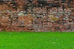 Cegły & trawa Fotografia Stock