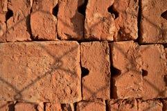 Cegły za ogrodzeniem Zdjęcia Stock