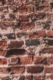 ceglana ściana tła stara zdjęcie stock