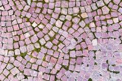 Ceglana bruk płytka, odgórny widok jako tło tekstura Zdjęcia Royalty Free