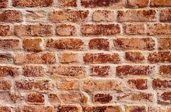 ceglana ?ciana stara czerwieni Brickwork tekstura obrazy royalty free