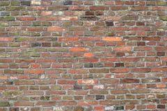 ceglana ściana starej kolorowa Zdjęcie Stock