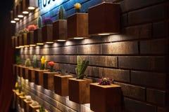 Ceglana dekoracyjna ściana kaktusy Obrazy Royalty Free