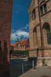 Ceglana fasada domy, krzaki i niebieskie niebo w alleyway Bruges, Zdjęcie Royalty Free
