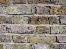 ceglana miastowa ściana Obraz Royalty Free