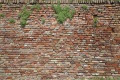 ceglana stara ściana Obraz Royalty Free