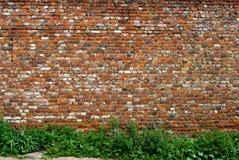ceglana stara ściana Obraz Stock