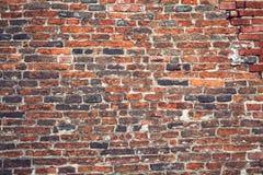Ceglana stara tekstury ściana dla tło projekta Obrazy Stock