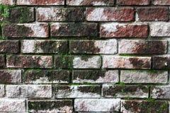 Ceglana tekstura Zdjęcie Stock