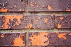 Ceglana tekstury fotografia krakingowa stara farba z bliska Obrazy Stock
