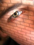 ceglana twarzy ściana Zdjęcie Stock