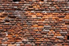ceglanej czerwieni ściana Zdjęcia Stock