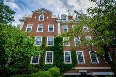 Ceglany dom przy Harvard Business szkołą w Boston, Massachuse Obraz Royalty Free