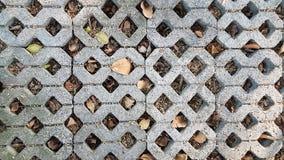 Ceglany footpath Obrazy Stock