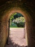 Ceglany tunel Obraz Royalty Free
