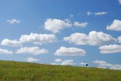 Cegonha e campo Foto de Stock Royalty Free