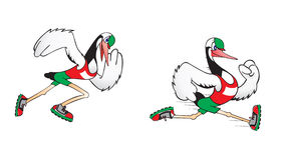 Cegonha Running Fotografia de Stock Royalty Free