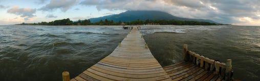 Ceiba Гондурас La Стоковое Фото