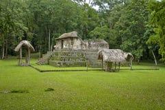 Ceibal ruïne-plaats Gr Royalty-vrije Stock Fotografie