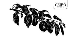 Ceibo filialuppsättning 2 vektor illustrationer