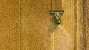 A ceifeira de liga da vista superior recolhe o trigo no por do sol Colhendo o campo de grão, estação da colheita filme