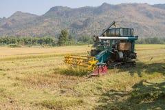 Ceifeira de liga do arroz fotografia de stock
