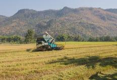 Ceifeira de liga do arroz imagem de stock