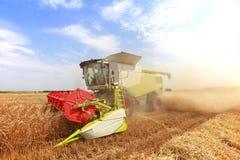 Ceifeira de liga em um campo de trigo Foto de Stock