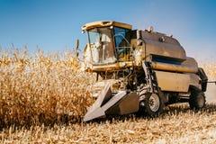 Ceifeira de liga industrial que trabalha os campos de milho Colhendo detalhes da agricultura fotografia de stock