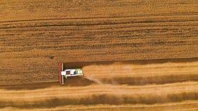 A ceifeira de liga moderna da definição da vista aérea 4k recolhe o trigo maduro que sae atrás de uma nuvem da poeira em um campo vídeos de arquivo