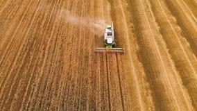 A ceifeira de liga moderna da definição da vista aérea 4k recolhe o trigo maduro que sae atrás de uma nuvem da poeira em um campo filme