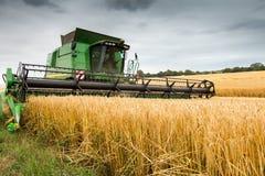 Ceifeira de liga no trabalho que colhe o campo da colheita Fotos de Stock Royalty Free