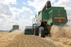 Ceifeira de liga que trabalha em um campo de trigo Fotos de Stock