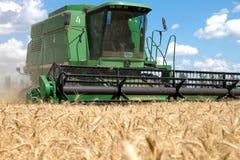 Ceifeira de liga que trabalha em um campo de trigo Imagens de Stock Royalty Free
