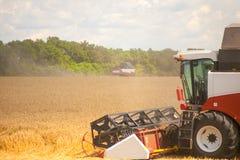 Ceifeira de liga que trabalha em um campo de trigo Fotografia de Stock