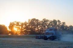 Ceifeira de liga que trabalha em um campo de trigo Imagens de Stock