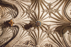 Ceiling of Albi Cathedral (Cathedral Basilica of Saint Cecilia), Royalty Free Stock Photo