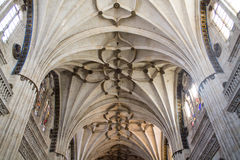 The ceiling of the cathedral of Salamanca Royalty Free Stock Images